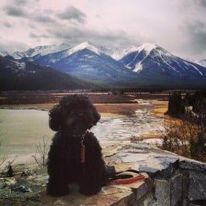Banff National Park - Canadian Road Trip