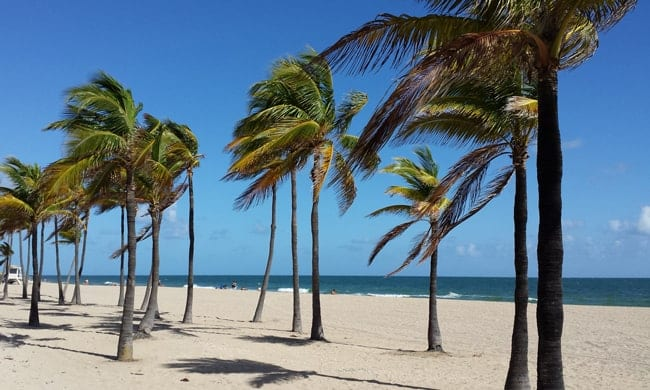 Winter Escape - Fort Lauderdale beach