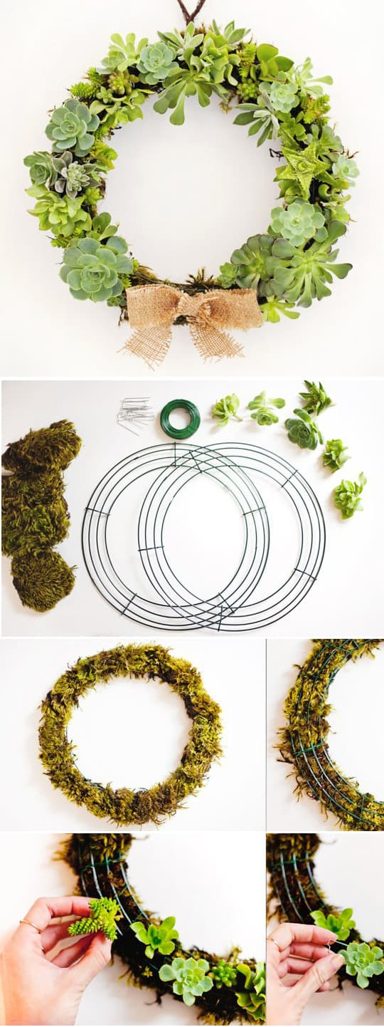 Christmas Wreath Ideas - DIY Succulent Wreath