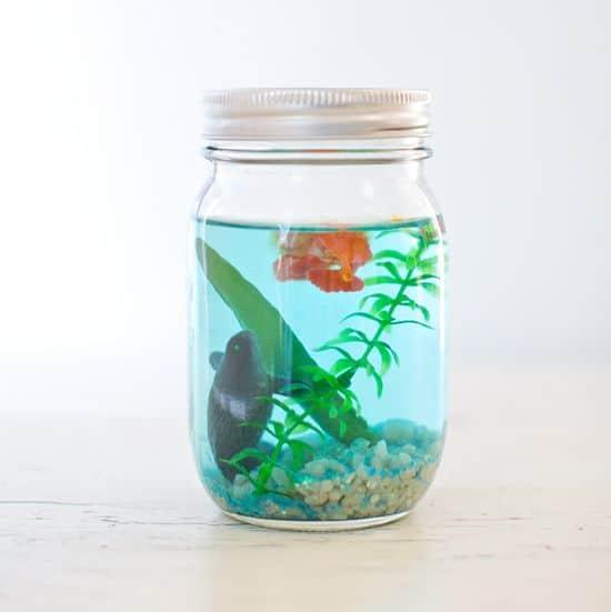 20 Mason Jar Craft Ideas - Mason Jar Aquarium