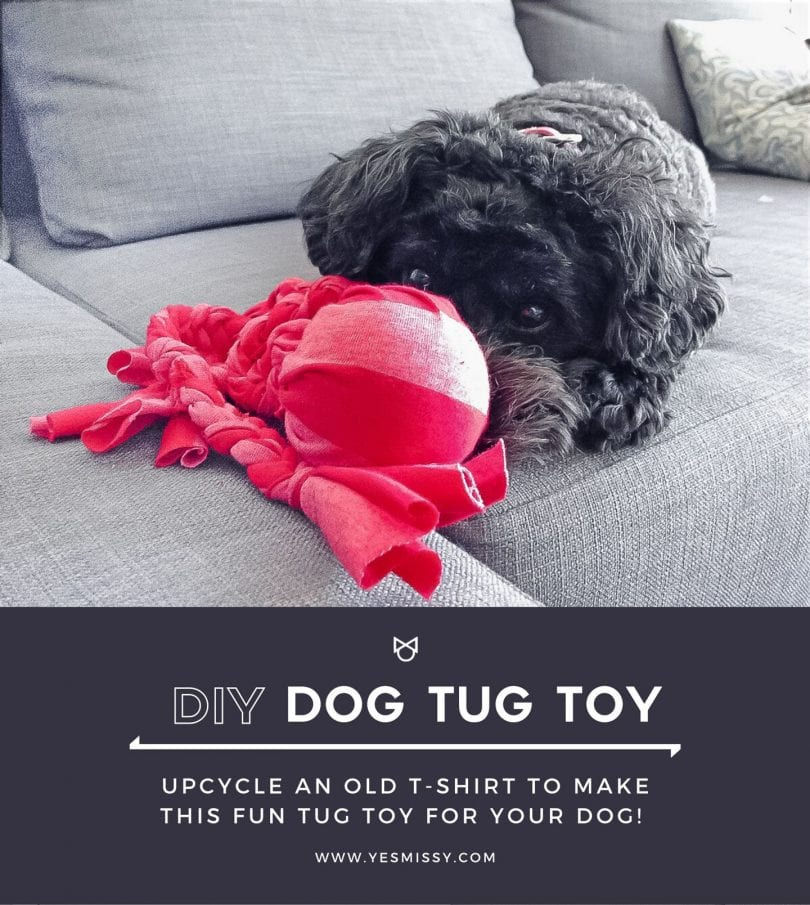 DIY dog toy idea - Make this DIY tug toy for your dog with a few simple materials that you probably already have around the house!
