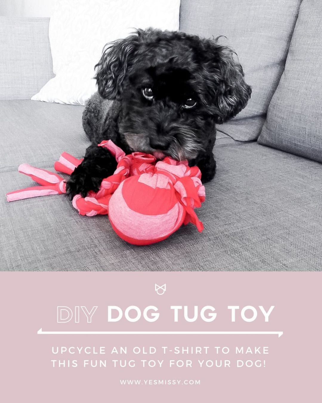 DIY Dog Toy Tutorial - make this easy tug toy for your dog by upcycling an old t-shirt and tennis ball