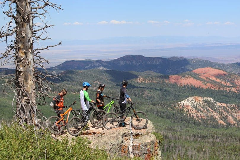 Dixie National Forest stretches for about 170 miles across southern Utah. It includes almost two million acres and is the largest national forest in Utah.