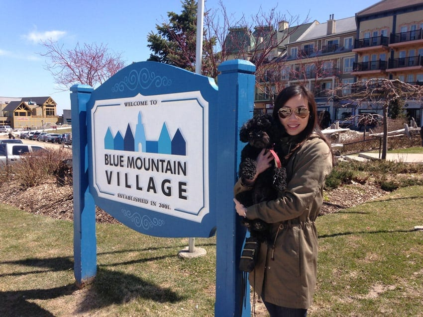 Weekend getaway to Blue Mountain