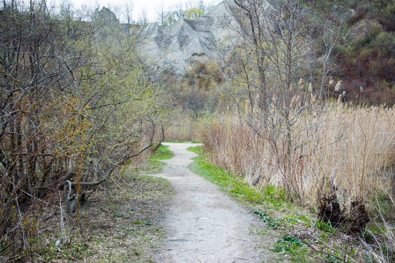Hiking at the Scarborough Bluffs