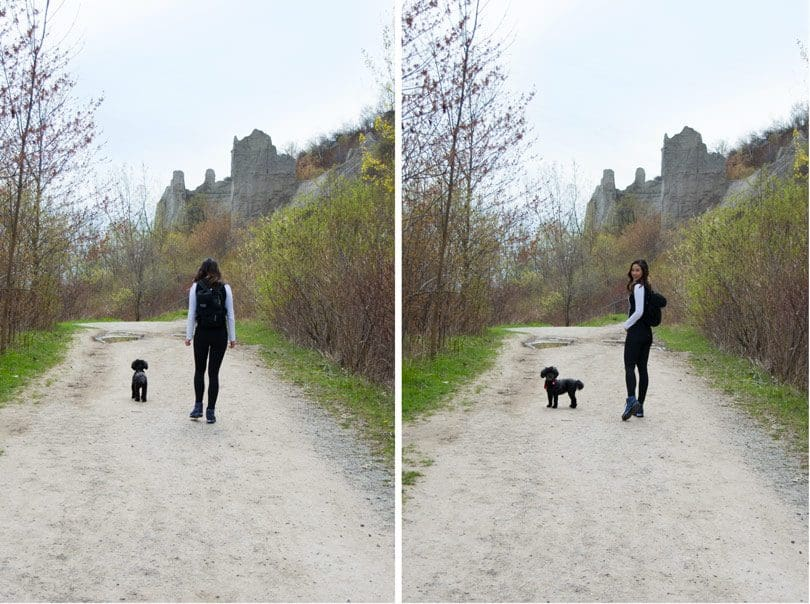 Hiking at the Scarborough Bluffs with my dog