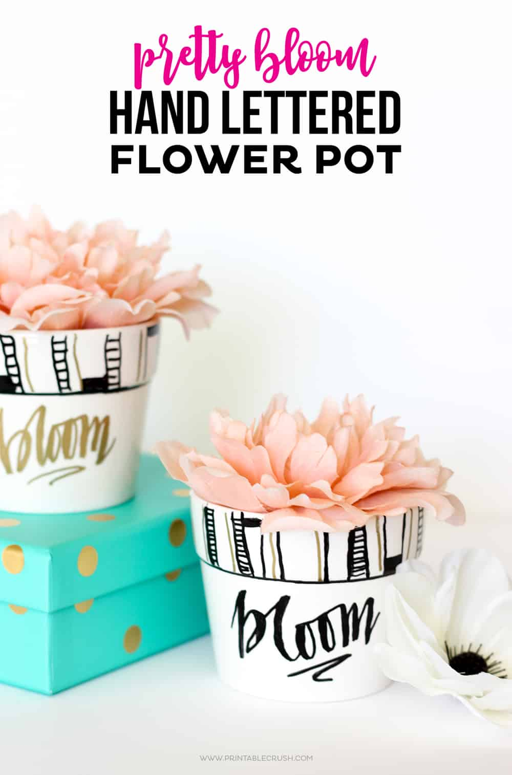 A cute sharpie craft to decorate your plain flower pots with some hand lettering and patterns.