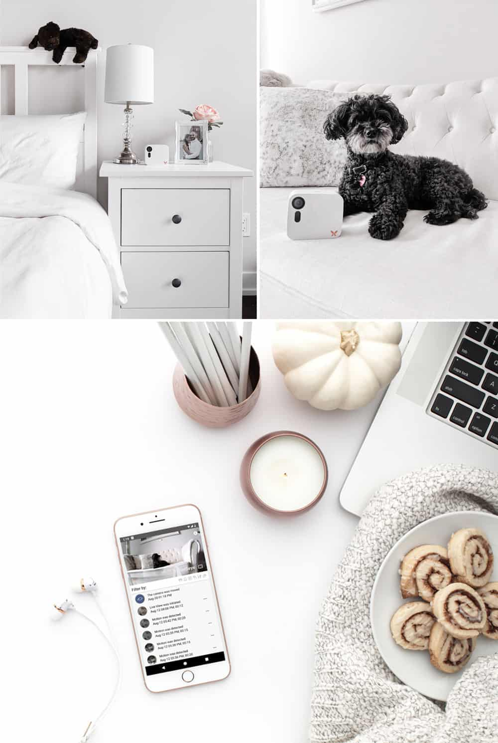 Keeping your home and pets safe is easy with the Ooma Butterfleye smart camera and dog camera..