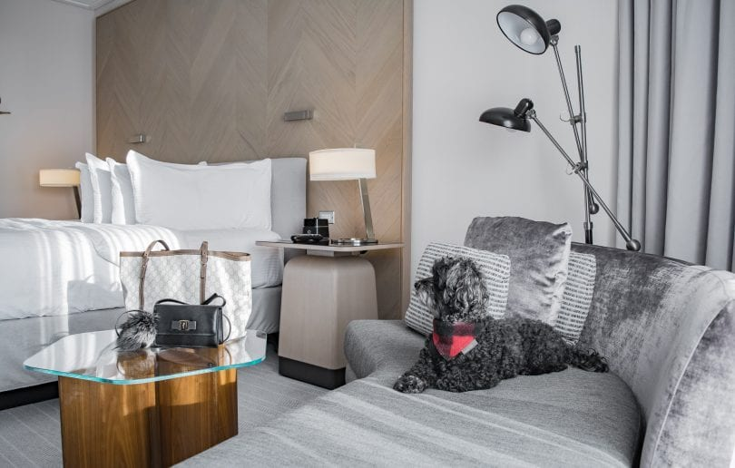 The beautiful modern rooms at the Intercontinental Toronto - Holiday Staycation