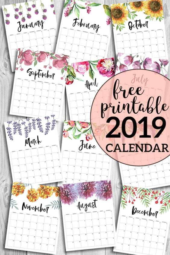 graphic about Pretty Calendars titled 20 Totally free Printable Calendars for 2019 - YesMissy
