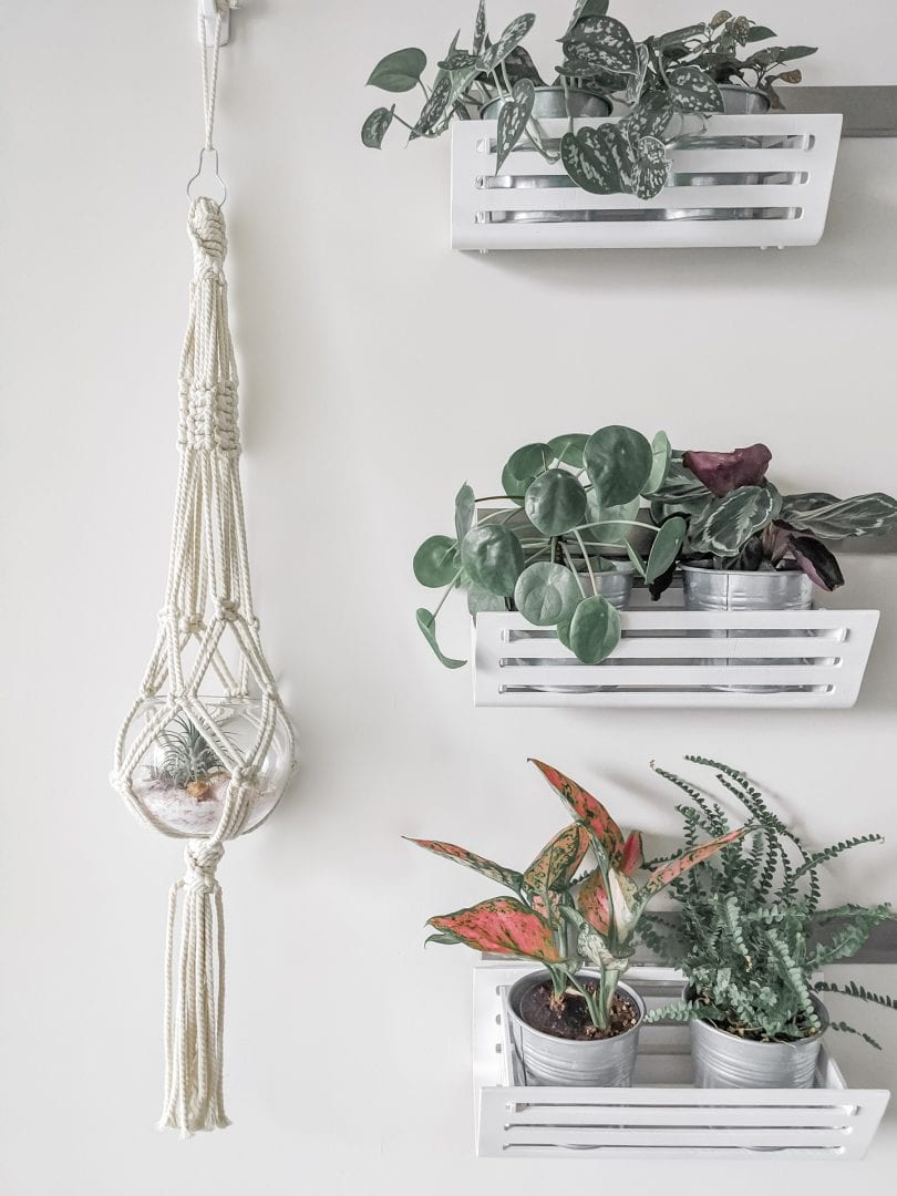 Follow this easy tutorial to learn how to make a macrame plant hanger for your home!