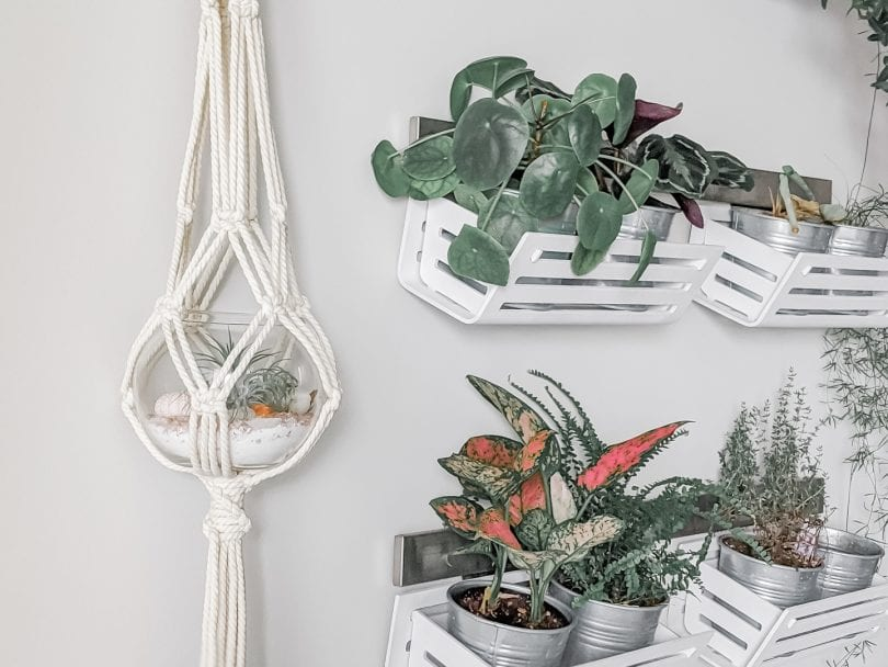 Learn how to make a macramé plant hanger by following this easy tutorial on yesmissy.com