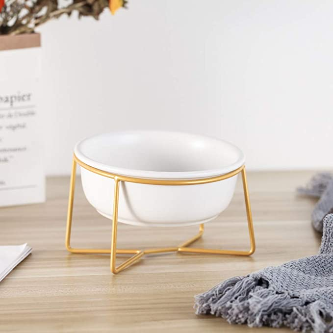 Cute elevated dog water bowl with gold stand
